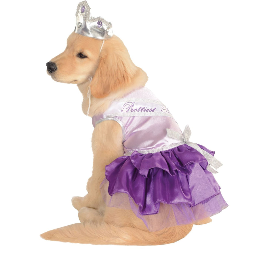 Cat & Dog Costume Prettiest Pooch Sm - Dog Costume dog costumes Dog Halloween