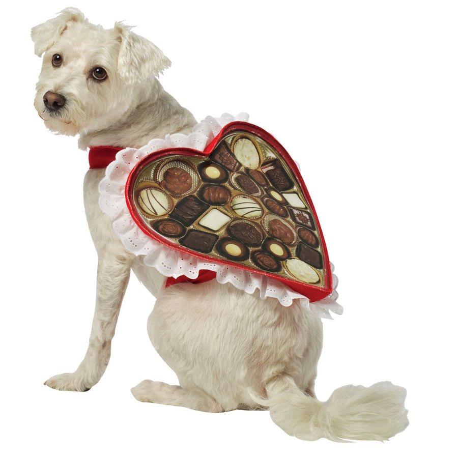 Chocolate Box Dog Costume Lg - Dog Costume dog costumes Dog Halloween Costume