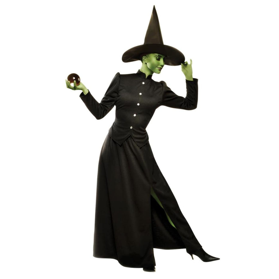 Classic Witch Adult Costume Large - adult halloween costumes female Halloween