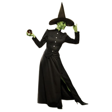Classic Witch Adult Costume Small - adult halloween costumes female Halloween