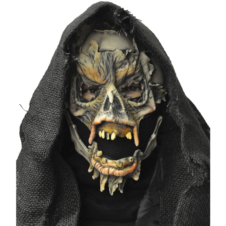 Decayed Mask - Costume Masks Halloween costumes Halloween Mask Halloween masks