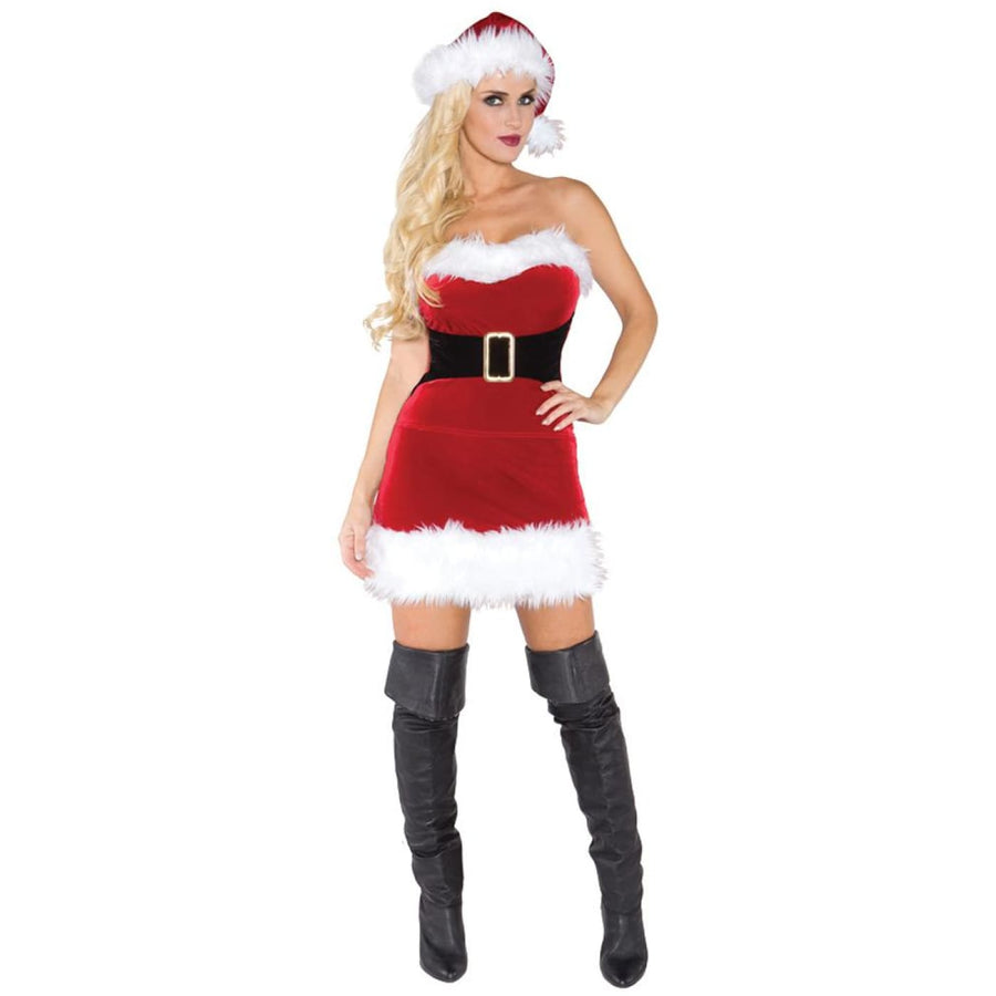 Mistress Claus Adult Costume Small - adult halloween costumes female Halloween