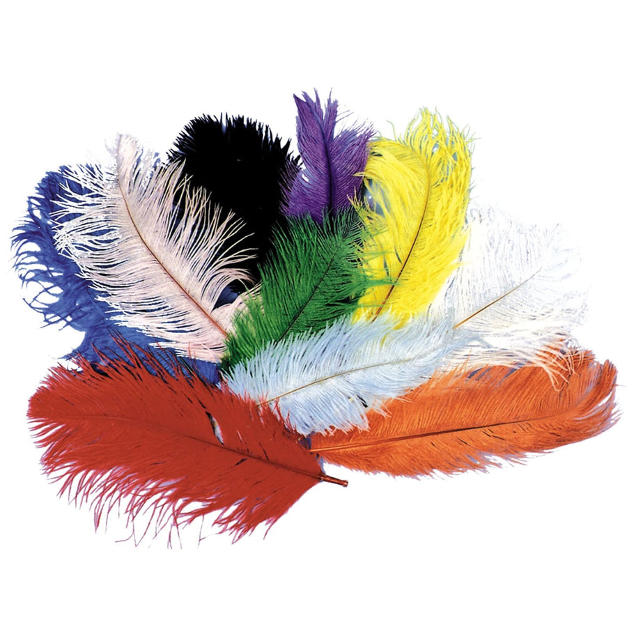 Ostrich Plumes Black - Glasses Gloves & Neckwear Halloween costumes