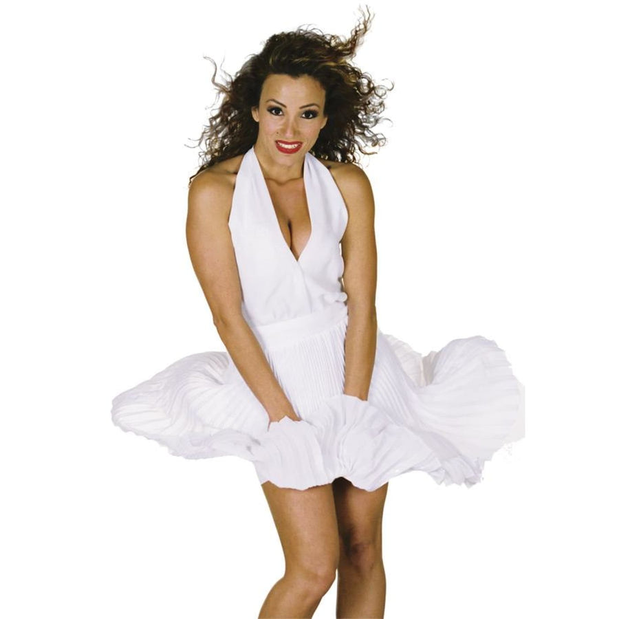 Pin Up Sm - 50s Costume adult halloween costumes female Halloween costumes