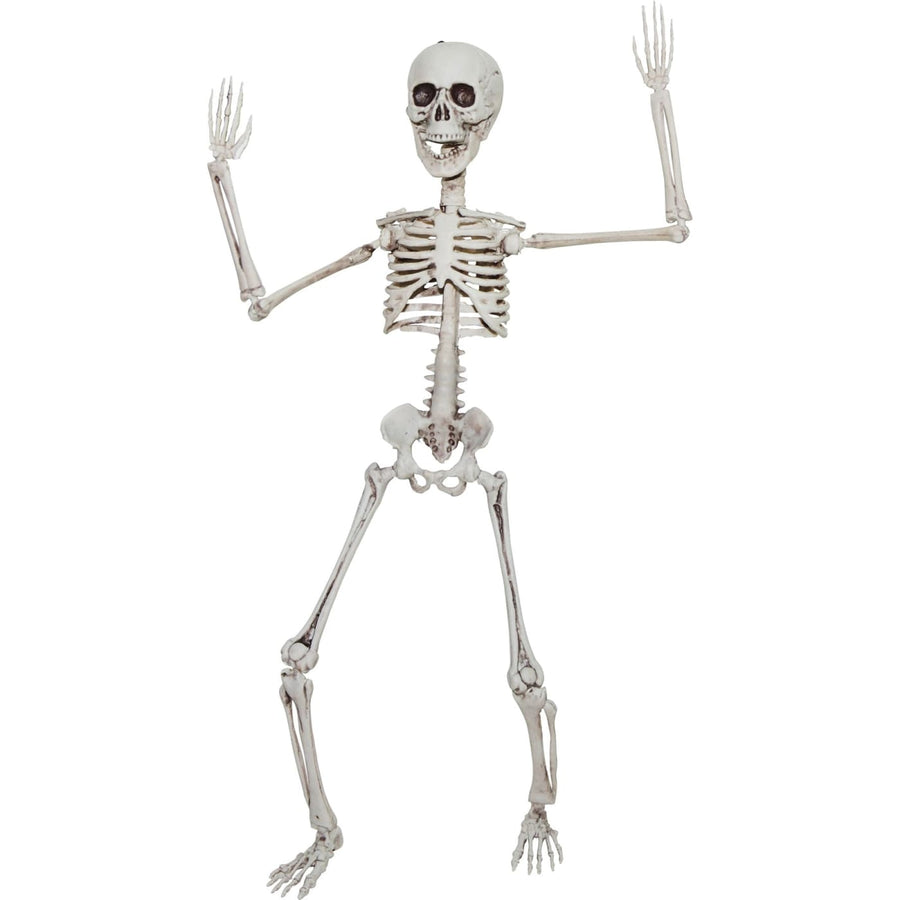 Poseable Skeleton 20 In - Decorations & Props Halloween costumes haunted house