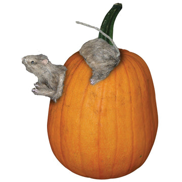 Rat-Pumpkin Push Ins - Decorations & Props Halloween costumes haunted house