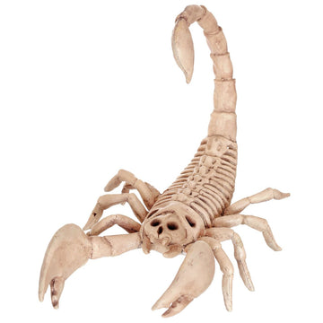 Scorpion Skeleton Prop - Decorations & Props Halloween costumes haunted house