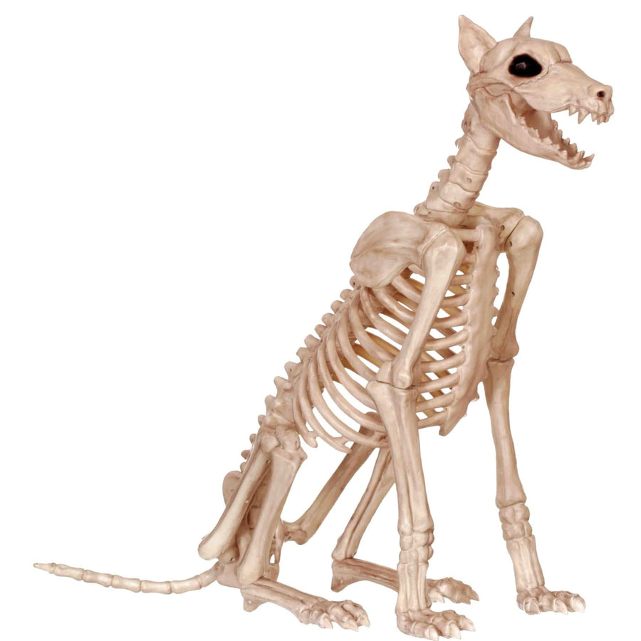 Skeleton Doberman - Decorations & Props Halloween costumes haunted house