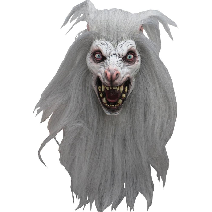 White Moon Mask - Costume Masks Halloween costumes Halloween Mask Halloween