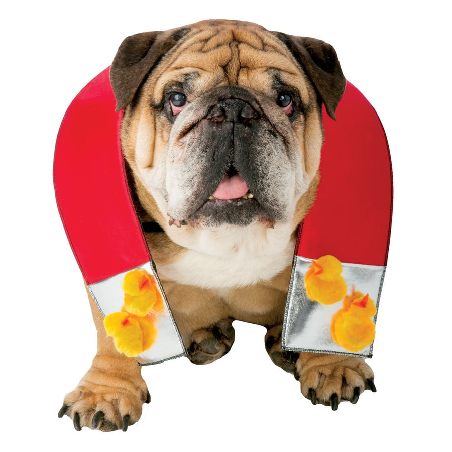 Zelda Chick Magnet Dog Xs-Sm - Halloween costumes