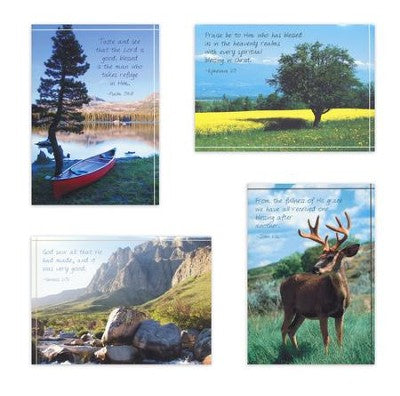 Birthday For Him Assortment - Outdoor Scenes (12 Boxed Cards)