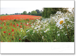 Inspire - Blank: Poppy and Daisy Meadow - KI Gifts Christian Supplies