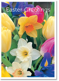 Easter Greetings - Spring Flowers (order in 6)