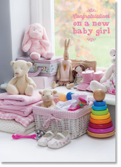 New Baby : Pink nursery toys (order in 6)
