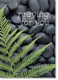 PRAYING FOR YOU: Pebbles and bracken