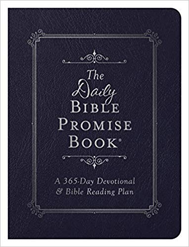 The Daily Bible Promise Book - KI Gifts Christian Supplies