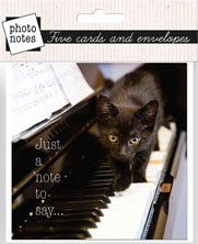 Photonotes: Kitten on Piano - Just a Note to Say - KI Gifts Christian Supplies