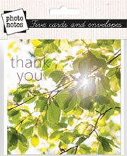 Thank You Notecards - Beech Leaves (order in 6)
