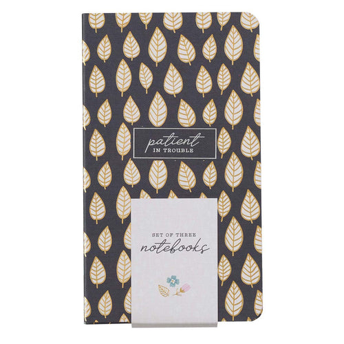 Joyful, Persistent, Patient Small Notebook Set