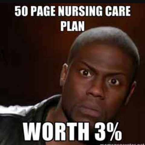 Nursing Care plan meme
