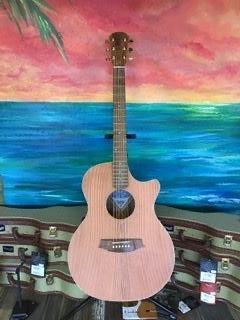 Cole Clark Acoustic/Electric Guitar CCAN2ECRDBL