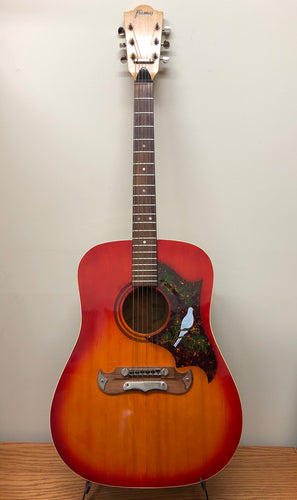 Framus Texan Dove Acoustic Guitar w/Case Vintage
