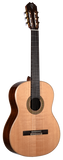 Teton STC105NT Classical Acoustic Guitar W/GB