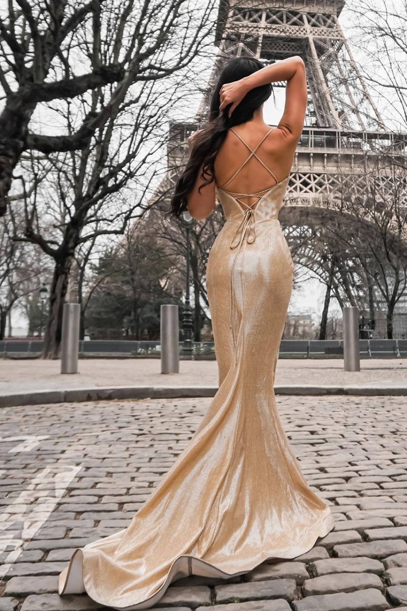 Sienna Gown Gold by Tina Holy