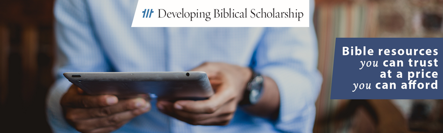 The vision behind the Developing Biblical Scholarship program