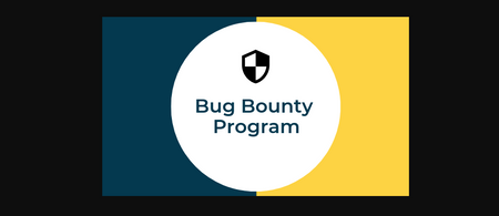 What is the Bug Bounty Program? How does Ethical Hackers Earning Thousands of Dollars by Reporting Bugs?