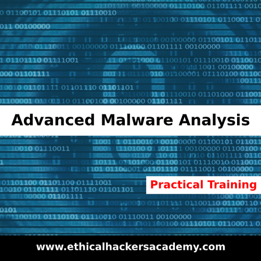 Advanced Malware Analysis - Practical Training with Exploit Kits - Ethical Hackers Academy