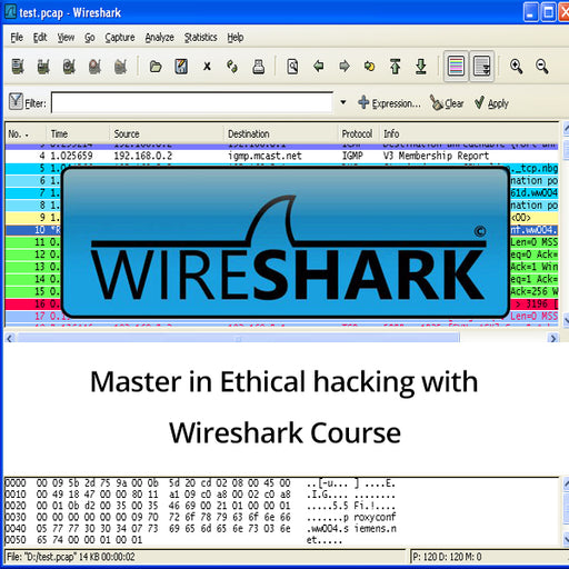 Master in Ethical hacking with Wireshark