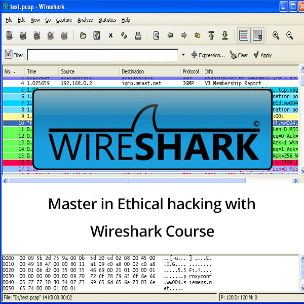 Master in Ethical hacking with Wireshark - Ethical Hackers Academy