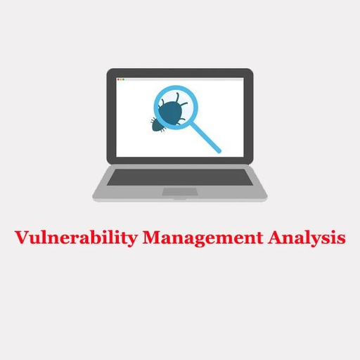 Vulnerability Management Analysis