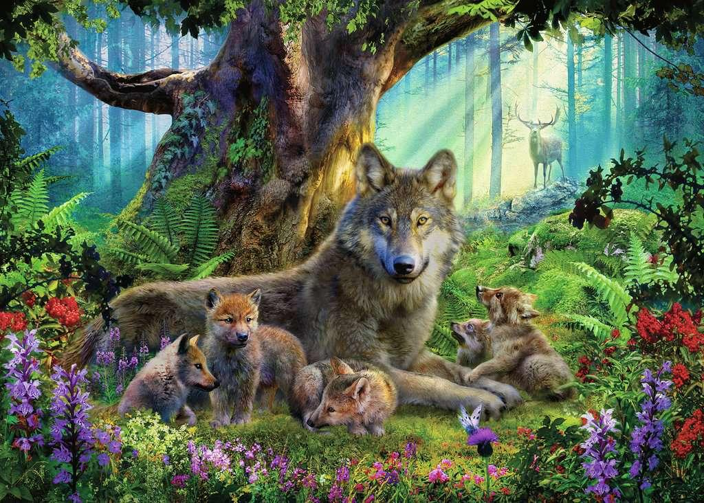 Wolves in Forest 1000pc Puzzle