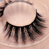 New Arrival Buy One Get One Free Jesvia Lashes 3D Lashes--CROWN