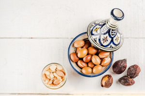 argan oil wholesale argan kernels morocco I The Argan Market