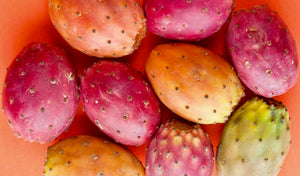prickly pear seed oil fruit seed pink beauty oil I The Argan Market