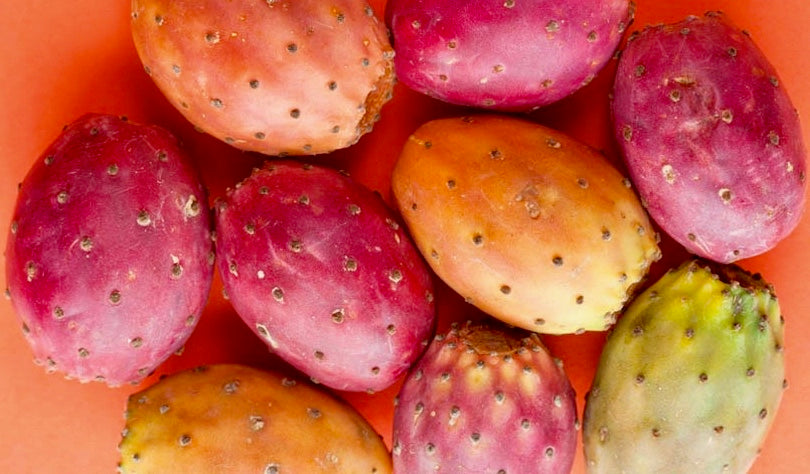 9 Amazing Benefits of Prickly Pear Seed Oil you need to know now!