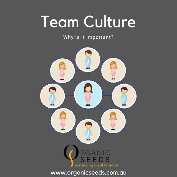 Importance of Developing a Good Culture within a Business