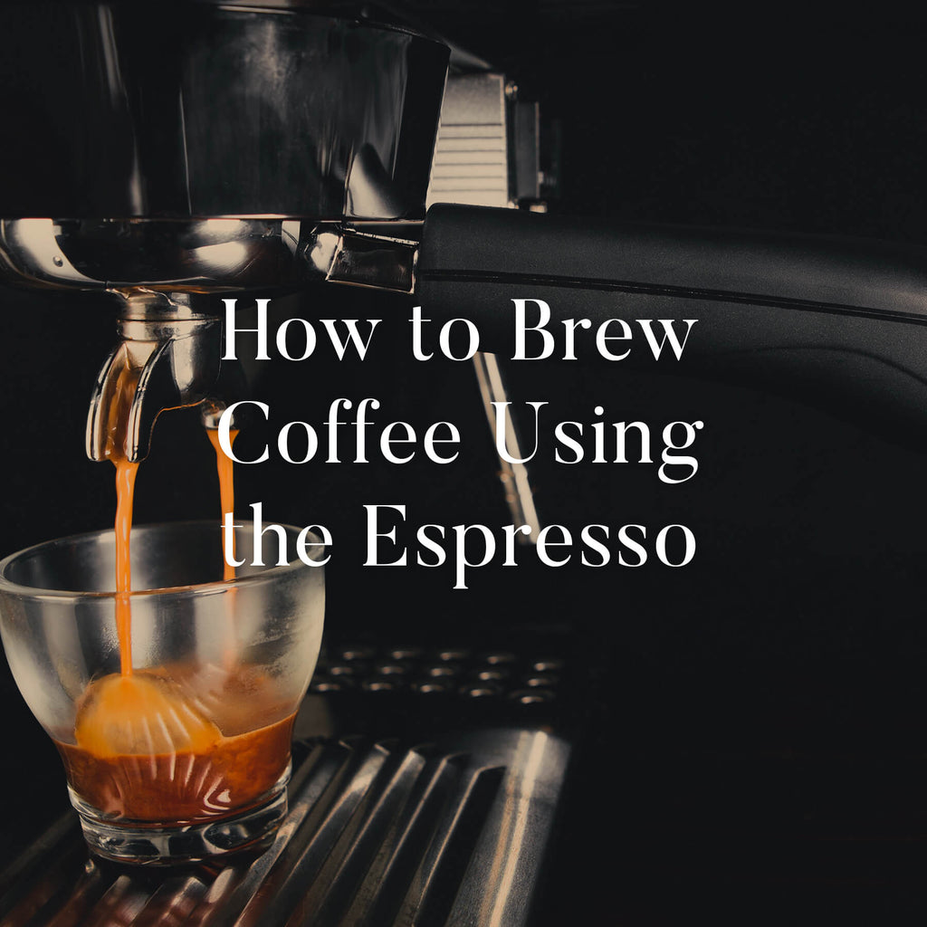 Chicago French Press How To Brew Espresso