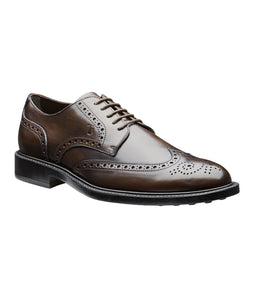 TOD'S Burnished Leather Wingtip Brogues