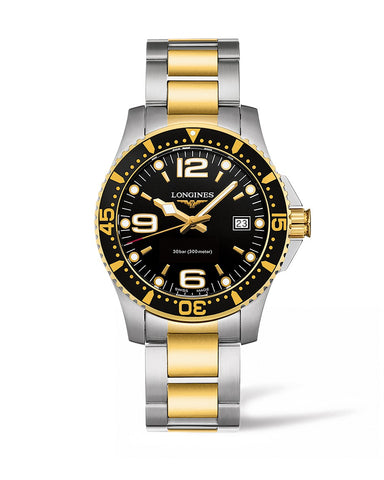 HYDROCONQUEST 41MM STAINLESS STEEL/PVD DIVING WATCH