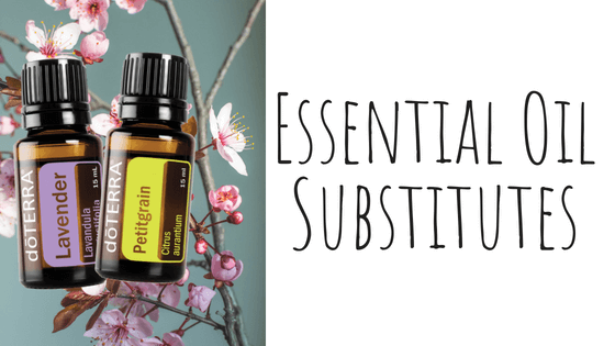 Essential Oil Substitutes - Hidden Valley Co
