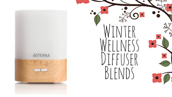 Winter Wellness Diffuser Blends - Hidden Valley Co