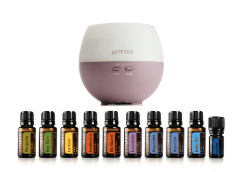 Why I Chose the doTERRA Home Essentials Kit - Hidden Valley Co
