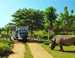 Selous Game Reserve by Road-Tanzania