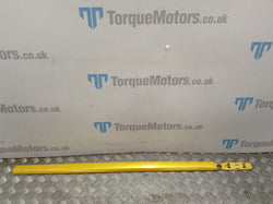 2008 Renault Clio 197 F1 Passenger side exterior door trim (Yellow)
