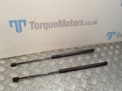 Land Rover Range Rover Sport L320 Boot lid gas struts PAIR