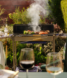 Summer barbecue with wine